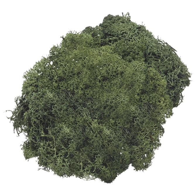 Mahovina islandska umjetna 50g Knorr Prandell 21-6694462 zelena
