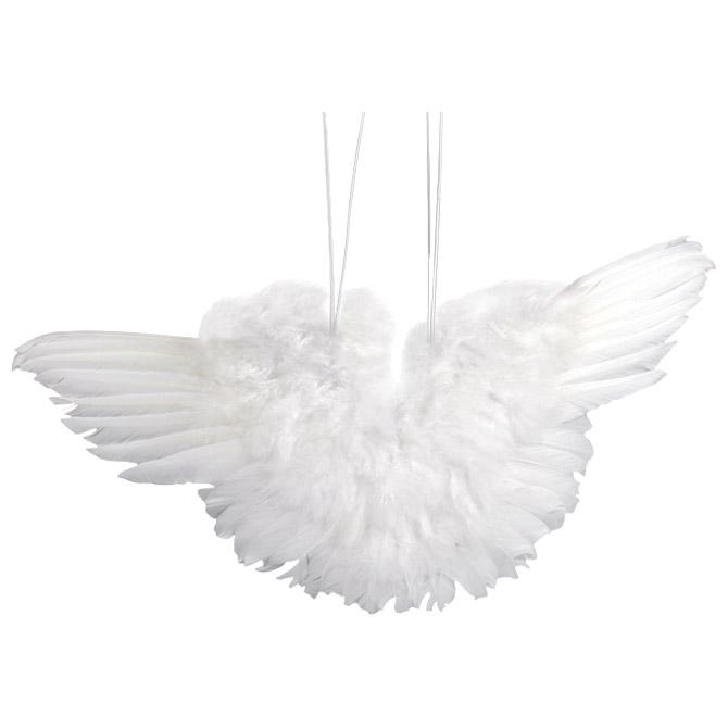 Perje Krila 11cm Knorr Prandell 21-8028772!!