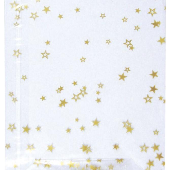 Vrećice ukrasne celofan 18x30cm sa zvjezdicama pk10 Heyda 20-30892 53 prozirne